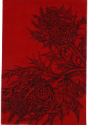 Colour Crimson