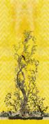 Colour Oriole Right Yellow