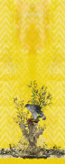 Colour Goshawk Right Yellow