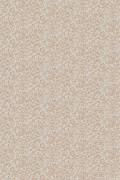 Colour Sand Lark