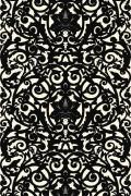 Colour Black on Ivory
