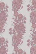 Colour Dusky Pink